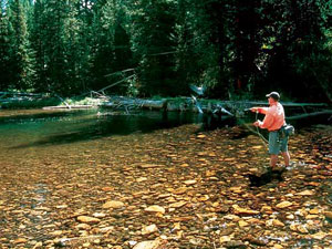 gore creek fly fishermen