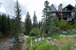pet friendly bed and breakfast in vail